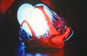 Amnion, 1974; Solo Dance performance with large 6ml clear plastic zippered sac, blue acrylic heart with flourescent fixture.