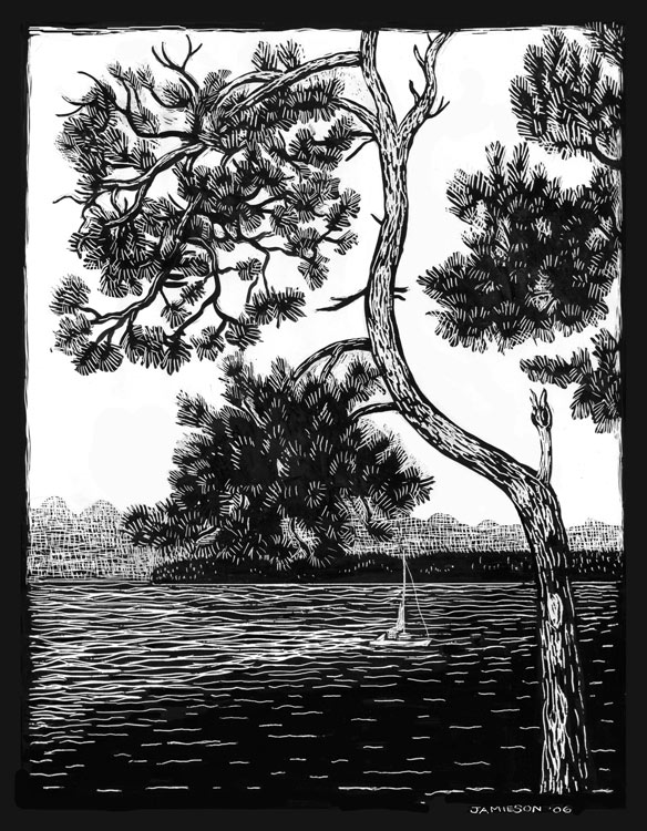 "Pine Tree, 2002 Marion-Lea Jamieson ink on paper 11"" x 14"""