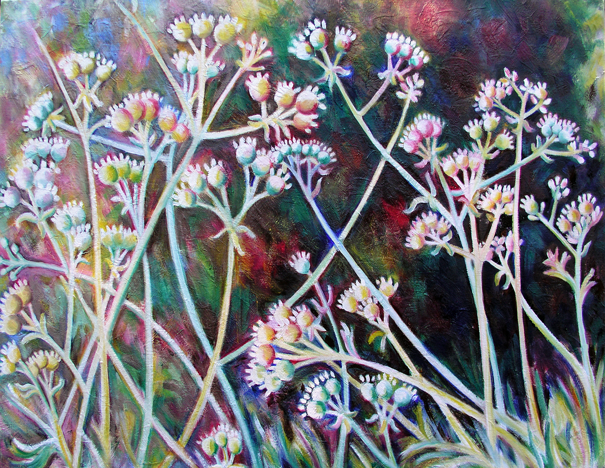 "Coriandrum sativum, 'Santo Long Standing', 2016 Marion-Lea Jamieson Oil on canvas 18"" h x 24"" w"