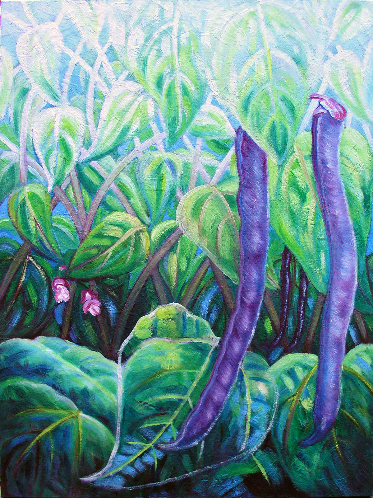 "Phaseolus Vulgaris, 'Royal Burgandy', 2016 Marion-Lea Jamieson Oil on canvas 24"" h x 18"" w"